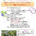 20140802_hibiki_チラシ-(1)